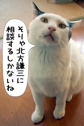 Shirokuro1004_2