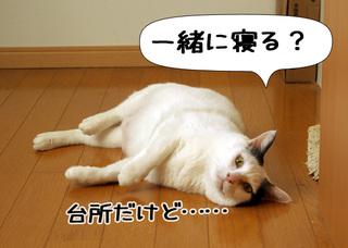 Shirokuro1004_4