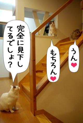 Shirokuro1004_5_2