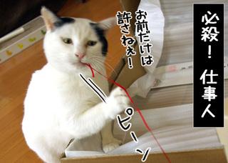 Shirokuro1004_8