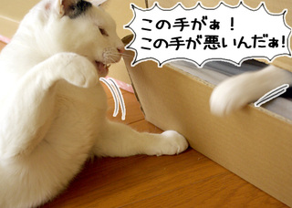 Shirokuro1004_9