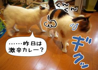 Shirokuro1005_10