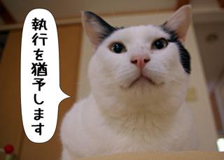 Shirokuro1005_11