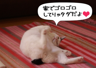 Shirokuro1005_3