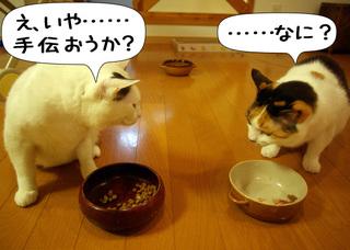 Shirokuro1005_5