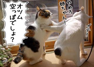 Shirokuro1005_7