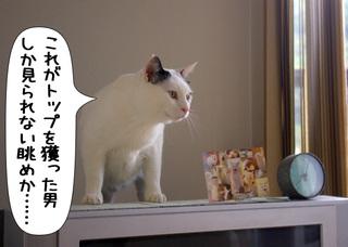 Shirokuro1006_1