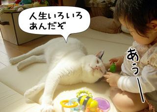 Shirokuro1006_9