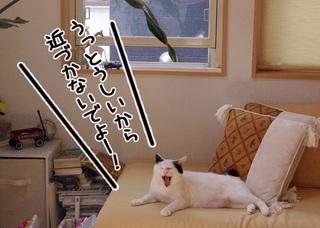 Shirokuro1007_1