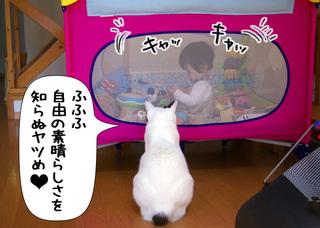 Shirokuro1007_10_2