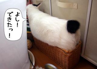 Shirokuro1007_4