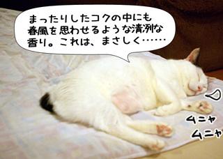 Shirokuro1007_5