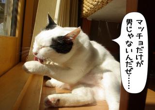 Shirokuro1007_7