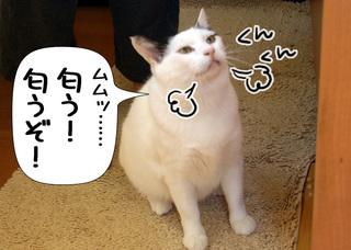 Shirokuro1007_8