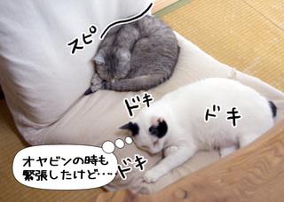 Shirokuro1007_9