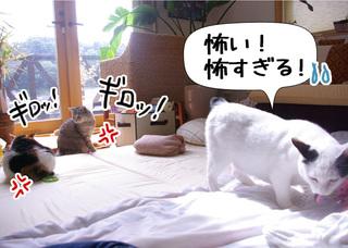 Shirokuro1008_2