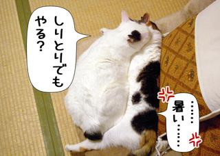 Shirokuro1008_3
