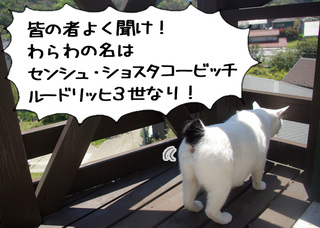 Shirokuro1008_7