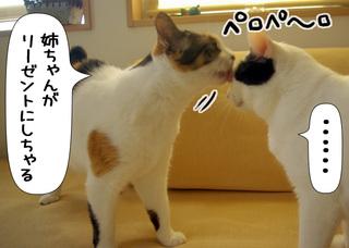 Shirokuro1009_10