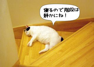 Shirokuro1009_3