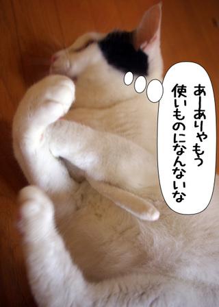 Shirokuro1009_7