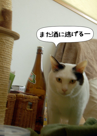 Shirokuro1009_9