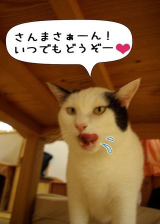 Shirokuro1010_2