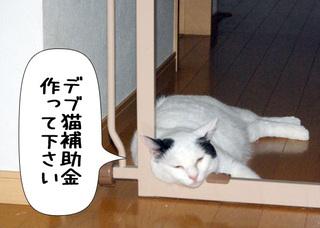 Shirokuro1010_3