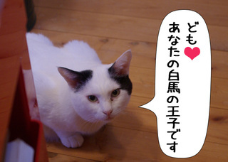 Shirokuro1011_10