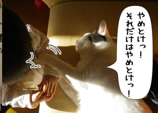 Shirokuro1011_6