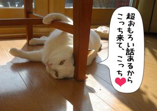 Shirokuro1011_7