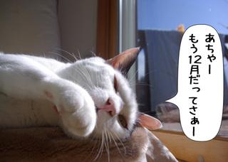Shirokuro1012_1