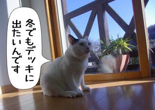 Shirokuro1012_2