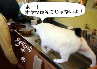 Shirokuro1012_11