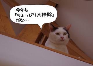 Shirokuro1012_7