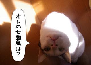 Shirokuro1012_8