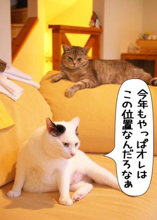 Shirokuro1101_2_2