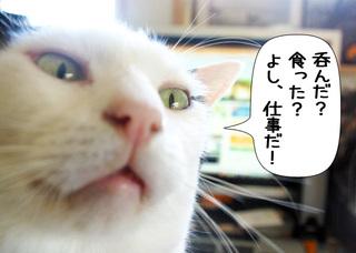 Shirokuro1101_4