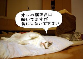 Shirokuro1101_5