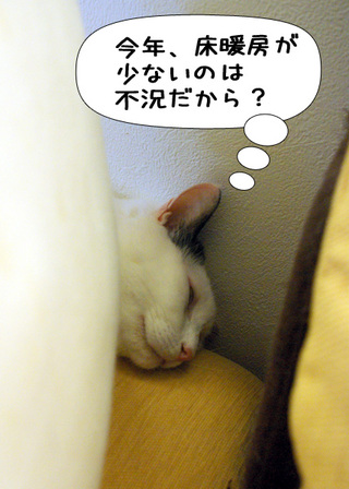 Shirokuro1101_6