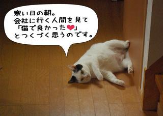 Shirokuro1101_7