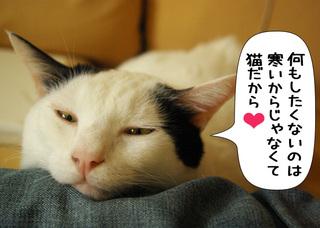 Shirokuro1101_8