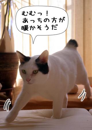 Shirokuro1101_9