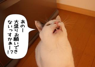 Shirokuro1102_4