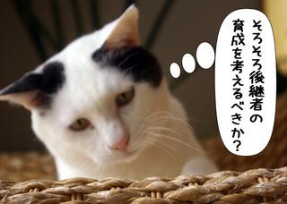 Shirokuro1102_7