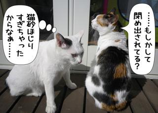 Shirokuro1103_2