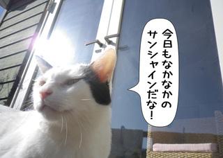 Shirokuro1103_3