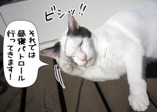 Shirokuro1103_7