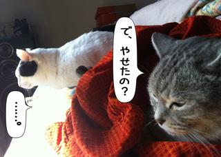 Shirokuro1105_11