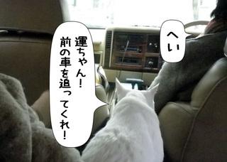 Shirokuro1105_4